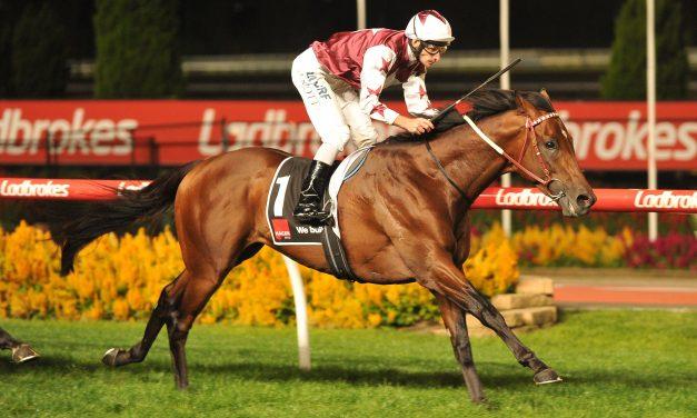 Sydney trip not confirmed for Alister Clark Stakes winner Cliff's Edge