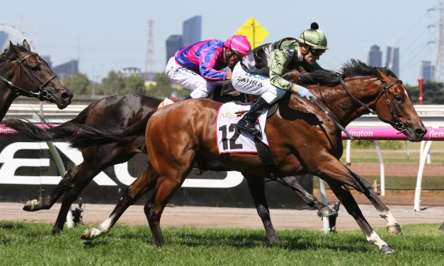 Maher hoping to bank a G1 win with Not A Single Cent in ATC Sires Produce Stakes