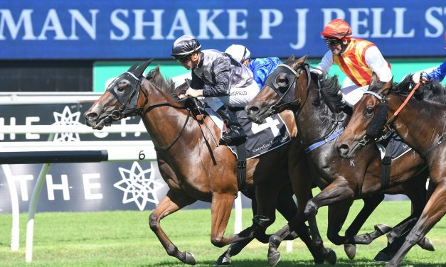 Houtzen is back with win in P J Bell Stakes