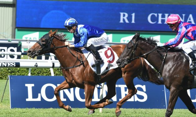 China Horse Club Mile winner Futooh a chance to back up in Champagne Stakes