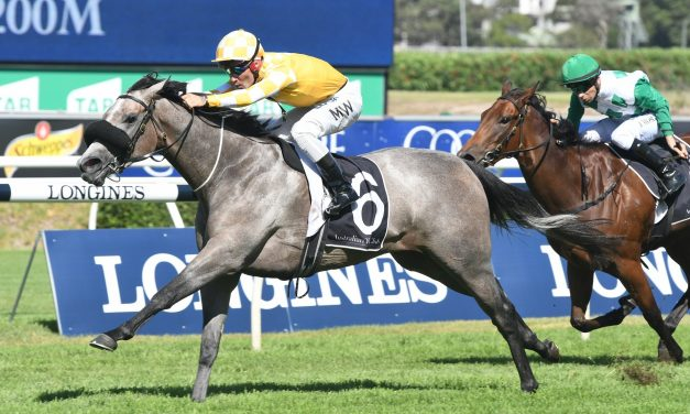 Pure Elation keeps the punters happy with Percy Sykes Stakes win
