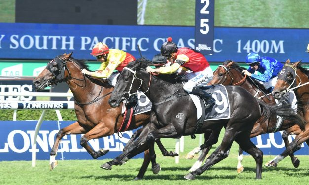 California Turbo's Queensland Derby assault to take off in Gunsynd Classic