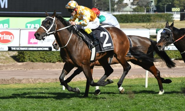 3 weeks break perfect for A.D. Hollindale Stakes favourite Comin' Through