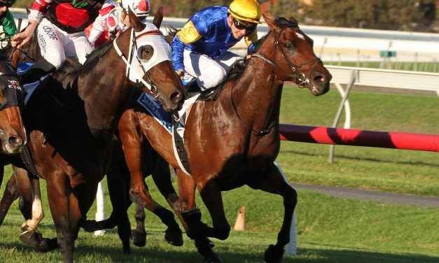 2018 Goodwood winner Santa Ana Lane to chase Stradbroke Handicap