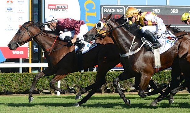 Most Important booking for Mark Du Plessis in 2018 Stradbroke Handicap