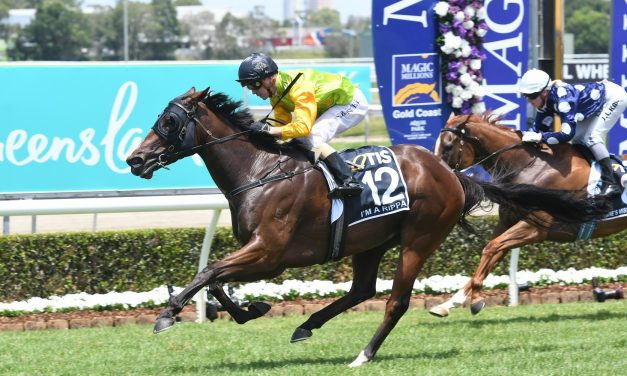 I'm A Rippa on trial for 2019 Stradbroke Handicap in Victory Stakes
