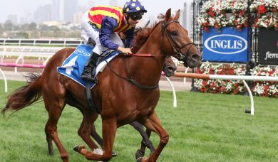 Weir chasing a second slot in 2018 The Everest with Nature Strip