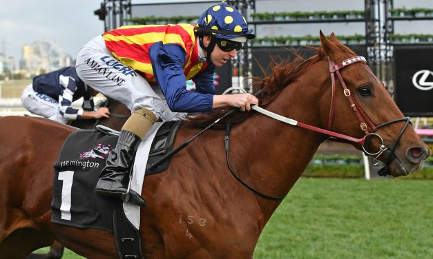 Nature Strip to head to Adelaide for Lightning Stakes