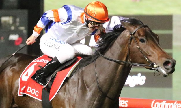 Hey Doc can give the McEvoys a fairytale result in 2019 Winterbottom Stakes