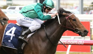 Humidor gets free ticket into 2020 Cox Plate with Feehan Stakes win