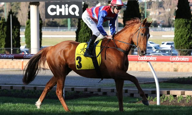 Cox Plate start unlikely for Dato' Tan Chin Nam Stakes winner Magic Consol