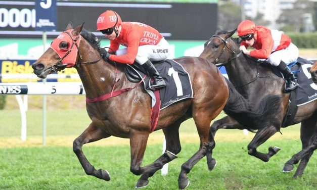 Redzel gets conditions to suit in 2020 T J Smith Stakes