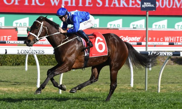 Winx makes Flemington her home prior to 2018 Turnbull Stakes