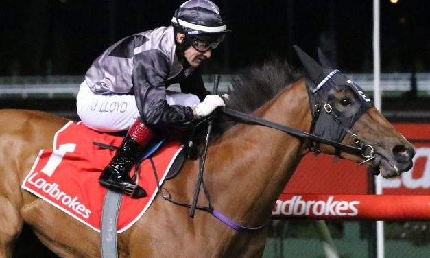 McEvoy jets off to England to partner Houtzen in 2019 King's Stand Stakes