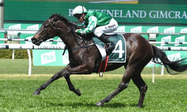 Catch Me holds on to favouritism for 2019 Fillies Blue Diamond Preview