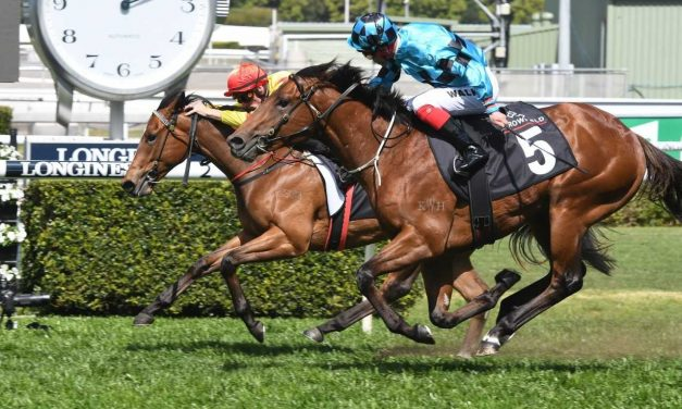Maher doesn't doubt the chances of Dubious in 2019 Magic Milliosn 2yo Classic