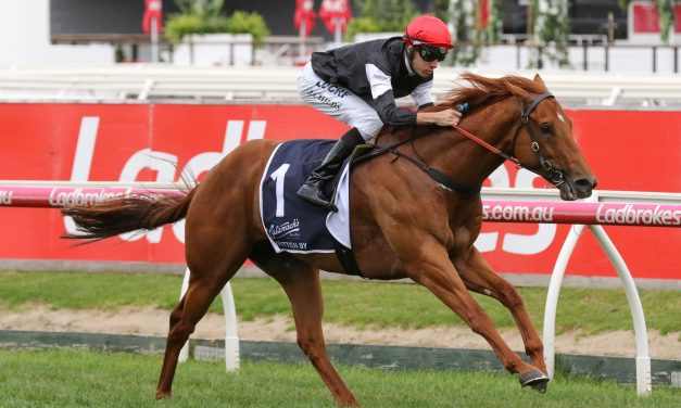 Begg Pencils in Autumn Carnival plan for Written By