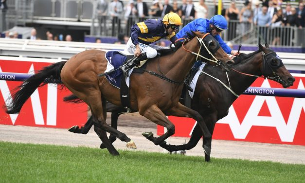 Ranier runs out the mile to win The Carbine Club Stakes