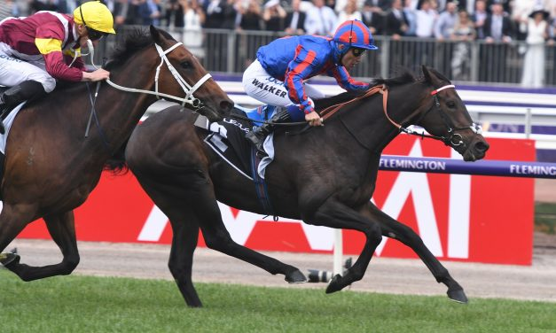 A Prince Of Arran has winning Melbourne Cup form