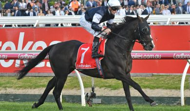 2018 Melbourne Cup Field intact: 24 to run