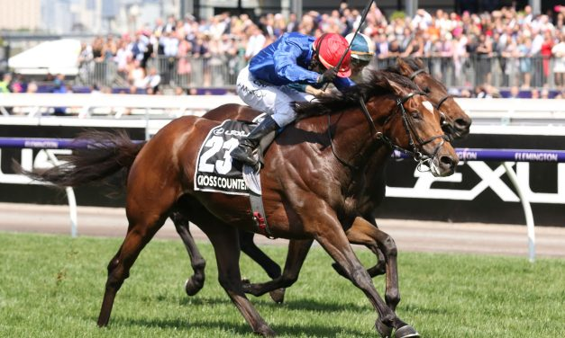 Cross Counter is the 2018 Melbourne Cup winner