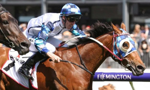 Kenedna to fire up with blinkers back on in Feehan Stakes