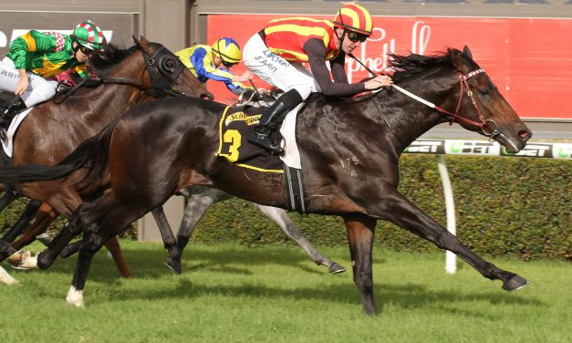 Railway Stakes failure Peaceful State unlikely to run in Kingston Town Classic