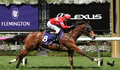 Unite And Conquer confirms favouritism for 2019 Magic Millions 2yo Classic