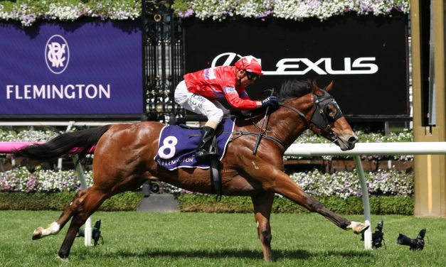 Unite And Conquer firm in the 2019 Magic Millions 2yo Classic betting