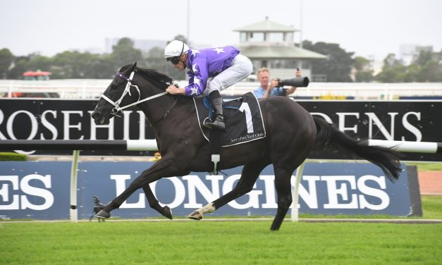 Accession draws wide barrier in 2019 Inglis Millennium