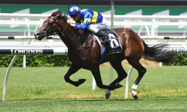 Pretty Brazen to take on Sydney 2yos in 2019 Inglis Millennium