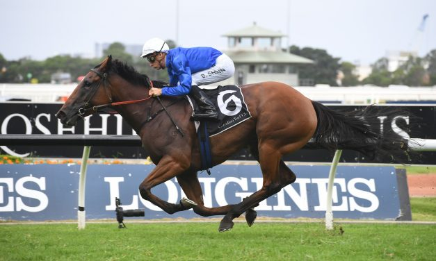 Alizee is dominant favourite in 2020 Expressway Stakes betting
