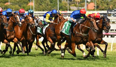 2019 Futurity Stakes Results: Alizee Wins