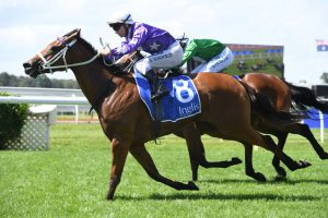 2020 Dane Ripper Stakes Winner Love You Lucy In An Upset