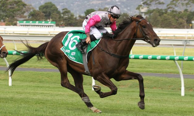 Melbourne Cup plans in the pipeline for Adelaide Cup winner Surprise Baby