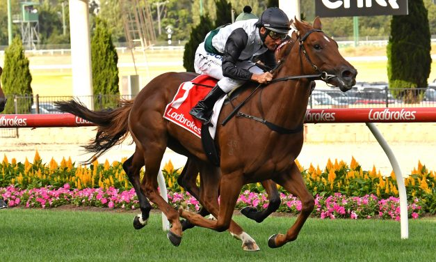 Lankan Star passed fit to take her place in 2019 Golden Slipper field