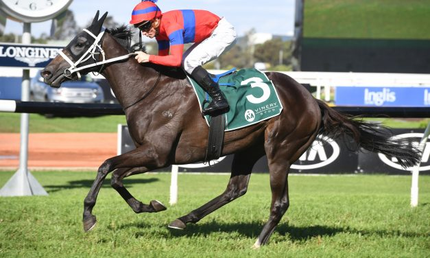 Turnbull Stakes winner Verry Elleegant leads home a Waller trifecta