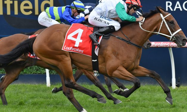 A fresh Life Less Ordinary can cause an upset in the 2019 Doncaster Mile