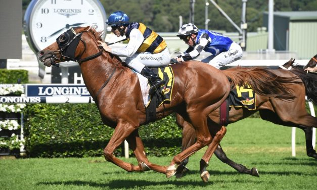 Gallic Chieftain charges into Sydney Cup with Chairman's Quality win