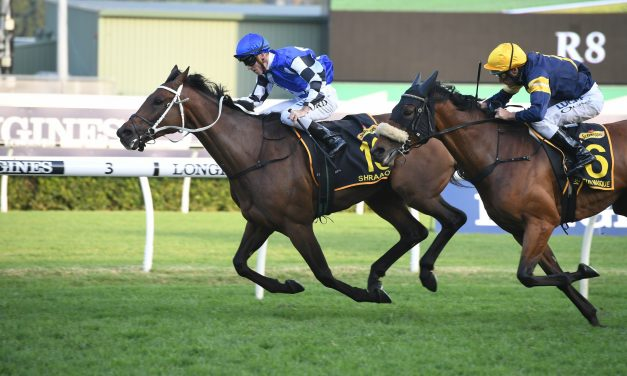 Shraaoh too strong to win 2019 Sydney Cup