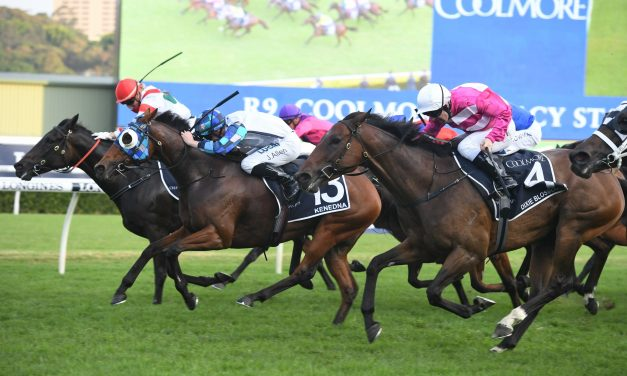 Kenedna dives through to win 2019 Coolmore Legacy Stakes