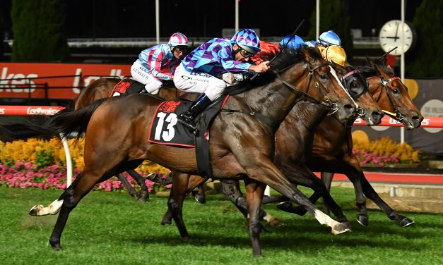 Sizzleme has to regain Spring form to challenge in 2019 Schweppes Oaks