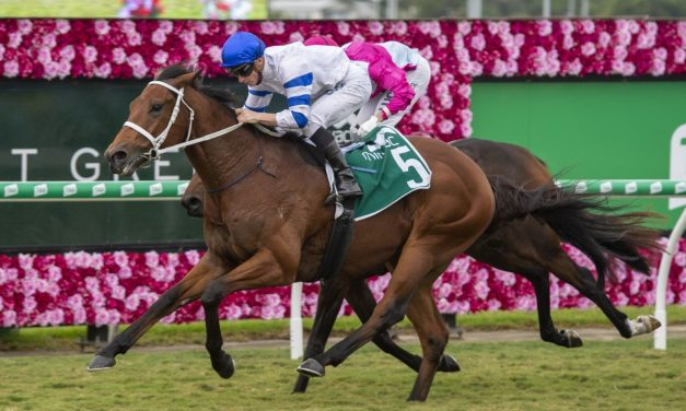2019 Queensland Guineas Results: Winner Kolding Eyes Golden Eagle