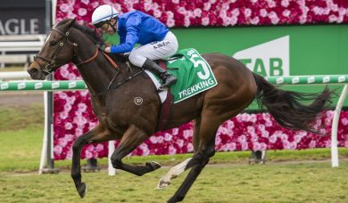 Trekking produced giant strides to win 2019 Stradbroke Handicap