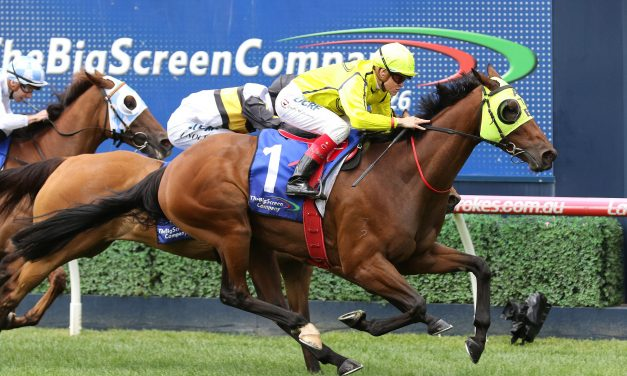 Yogi lumped with 60kg top weight for 2019 Queensland Cup