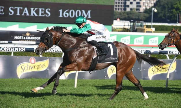 McEvoy to test Castelvecchio for Sydney Autumn majors