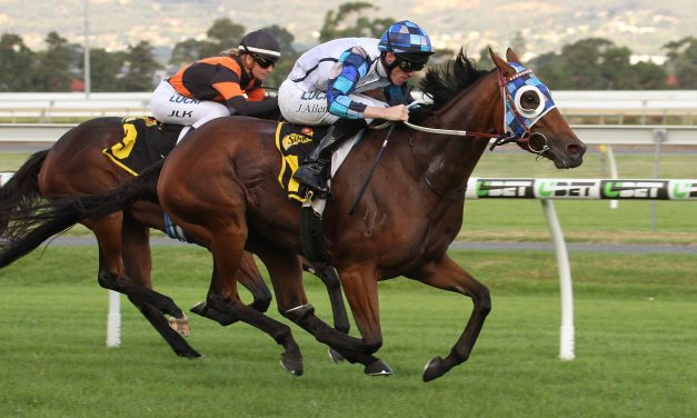 Kenedna to kick off Caulfield Cup campaign in P.B. Lawrence Stakes