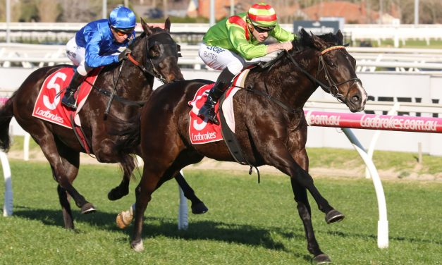 Sir Rupert Clarke Stakes Target for Begood Toya Mother