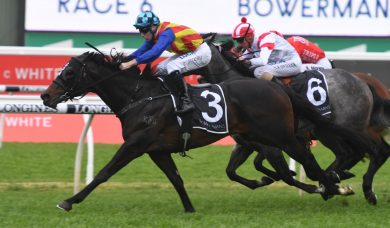 Everest Favourite Pierata Too Good for Redzel in The Shorts