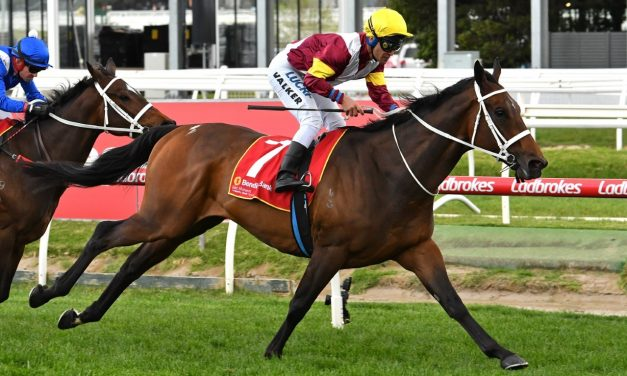 No Caulfield Cup penalty for Brimham Rocks